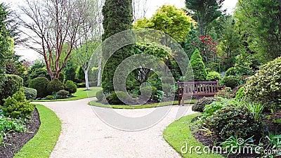 Beau jardin de conif re longueur clips vid os vid o for Jardin en longueur