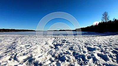 beau paysage 4K de lac congelé dans un mouvement de casserole avec la lumière du soleil par les bois de pin de bouleau banque de vidéos