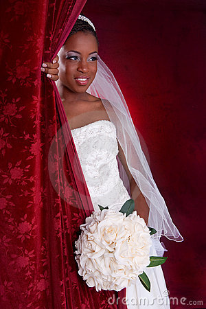 Beautiful African American Bridal Portrait