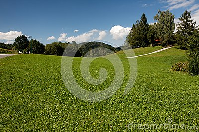 Beautiful Alpine Meadow  Stock Photos - Image: 8304323