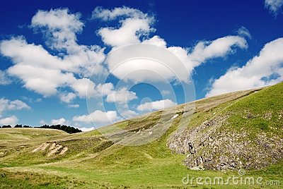 Beautiful alpine meadow with green grass
