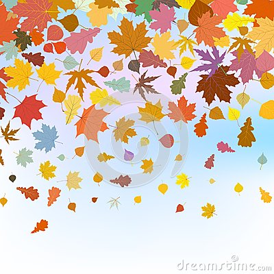 Free Beautiful Autum Leaves Against Sky. EPS 8 Royalty Free Stock Photography - 41375717
