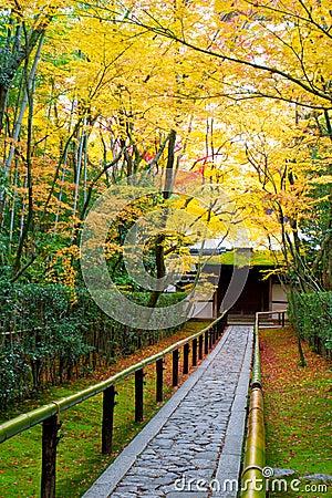 Beautiful garden in autumn, Kyoto Japan