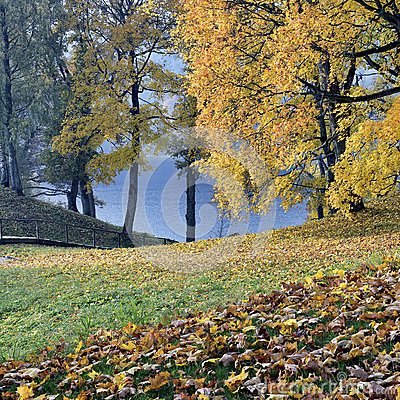 Free Beautiful Autumn Park Stock Photography - 34693202