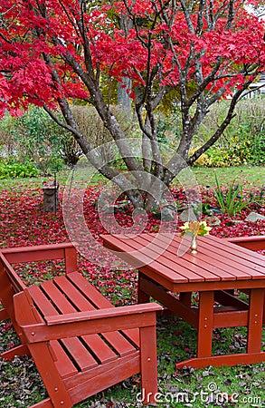 Beautiful autumn s garden details