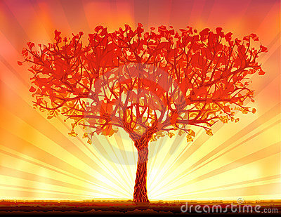 Beautiful autumn sunset tree