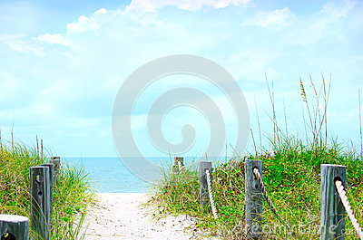 Beautiful beach path scene with sea oats