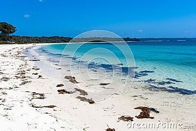 Beautiful Blue Sea Coastline