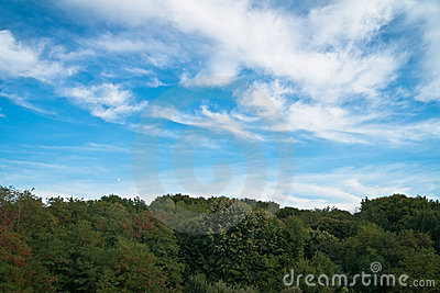 Beautiful blue sky and green forest on horizon