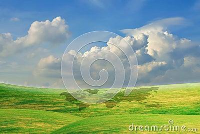Beautiful Blue Sky With Green Grass Field