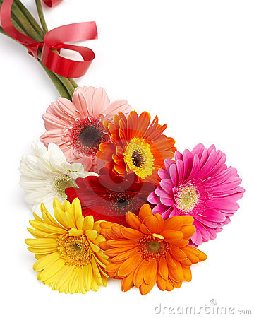 Beautiful bouquet of colorful gerbera flowers