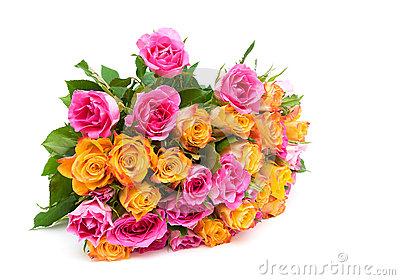 Beautiful bouquet of roses isolated on white background