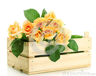 Beautiful bouquet of roses in wooden box
