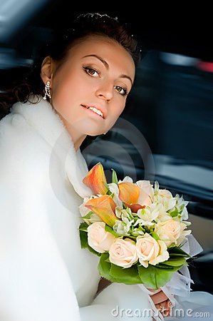 Free Beautiful Bride Royalty Free Stock Photography - 7080757