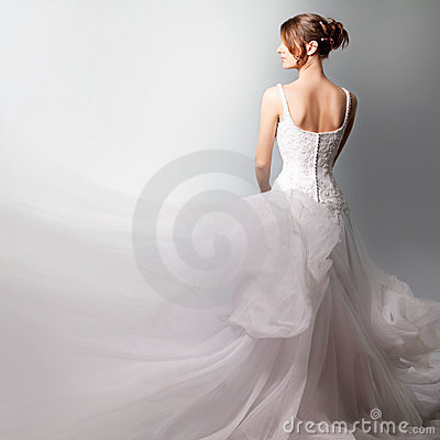 Free Beautiful Bride In A Luxurious Wedding Dress Stock Photos - 19766293