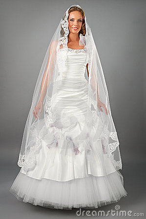 Beautiful bride under veil wearing wedding dress