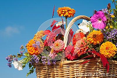 Beautiful, bright fall flowers in a wicker basket