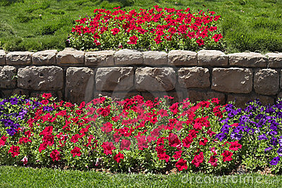 Beautiful bright flower beds in  park