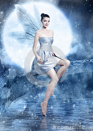 Free Beautiful Brunette Woman As Silver Night Fairy Royalty Free Stock Photo - 29957935