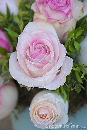 Free Beautiful Bucket Of Pink Roses Stock Photos - 103182723