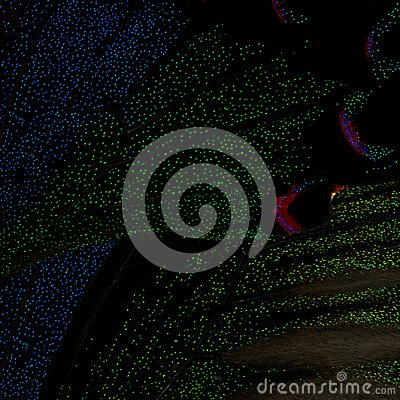 Free Beautiful Butterfly Wings In Black With Green And Blue Glimmerings Spots Royalty Free Stock Photo - 105705335