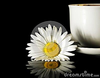 Beautiful camomile and coffee