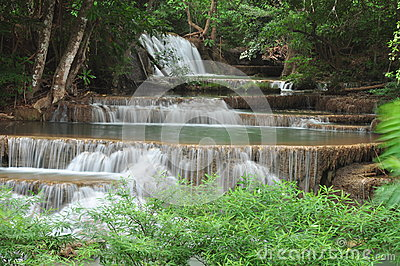 Beautiful cascade waterfall in green forest