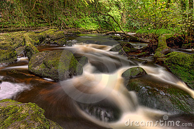 Beautiful cascades of Clare Glens - Ireland.