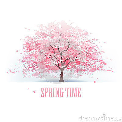 Free Beautiful Cherry Blossom Tree Stock Photos - 37259193