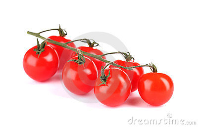 Beautiful cherry tomatoes on a branch