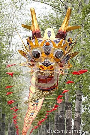 Free Beautiful Chinese Dragon Kite Royalty Free Stock Image - 23112816
