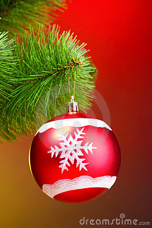 Beautiful Christmas red ball on fir tree
