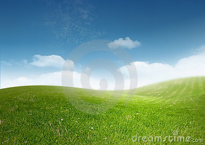 Beautiful Clean Landscape