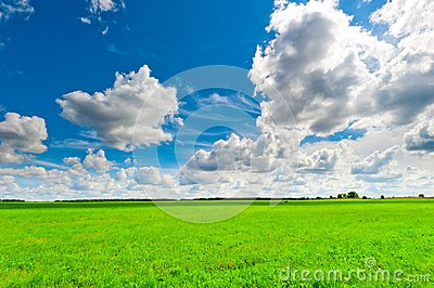 Beautiful clouds over the green field