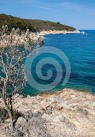 Beautiful coastlines in Elba island. Italy