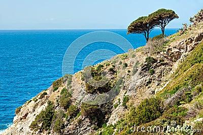 Beautiful coastlines in Isle of Elba.