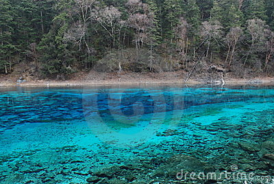 Beautiful & colorful water in JiuZhai, China