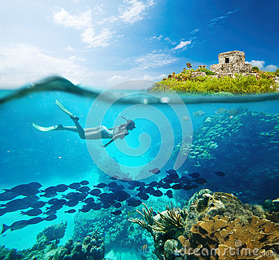 Free Beautiful Coral Reef Caribian Sea With Lots Of Fish And A Woman Royalty Free Stock Photo - 39830805