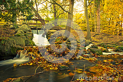 Beautiful creek in the autumnal park