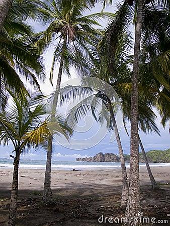 Beautiful deserted tropical beach