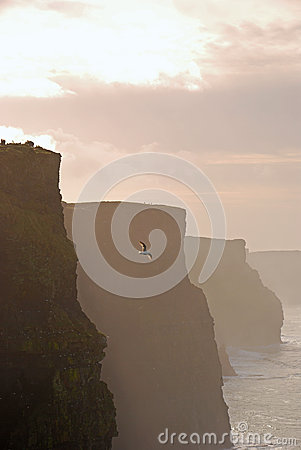 Beautiful Evening View of Cliffs of Moher
