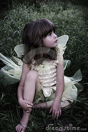 Free Beautiful Fairy Royalty Free Stock Image - 2627036