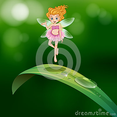 A beautiful fairy above an elongated green leaf