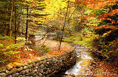 Beautiful Fall Scene Stock Photo Image 3048780