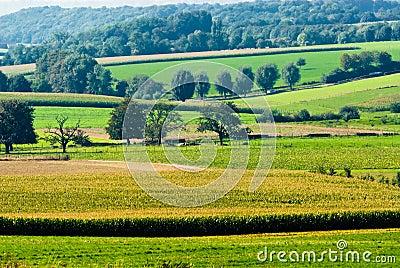 Beautiful farmland landscape