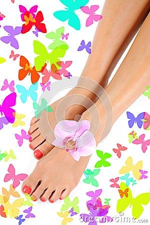 Beautiful feet leg with perfect spa pedicure