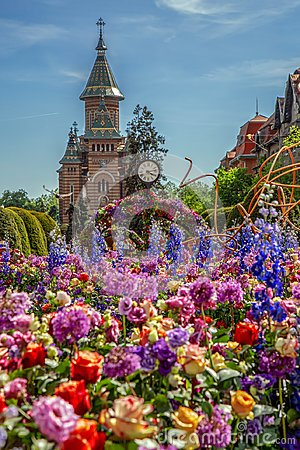 Free Beautiful Floral Decoration In Timisoara, Romania Royalty Free Stock Image - 115963346