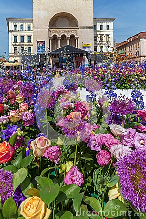 Free Beautiful Floral Decoration In Timisoara, Romania Stock Images - 116165504