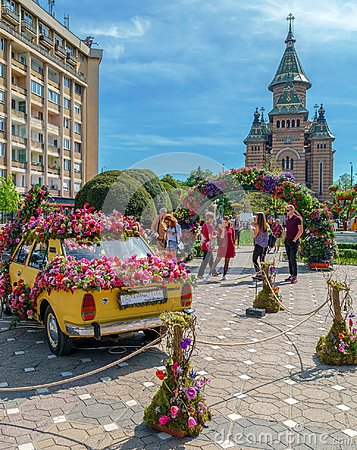 Free Beautiful Floral Decoration Of An Old Car In Timisoara, Romania Royalty Free Stock Images - 116614609