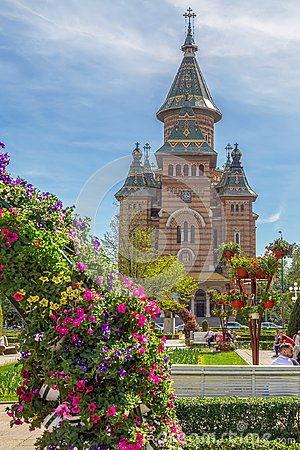 Free Beautiful Floral Decorations In Victory Square, Timisoara, Roman Royalty Free Stock Images - 116614619
